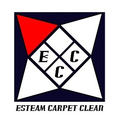 Esteam Carpet Clean and Janitorial Service, LLC - Black Owned