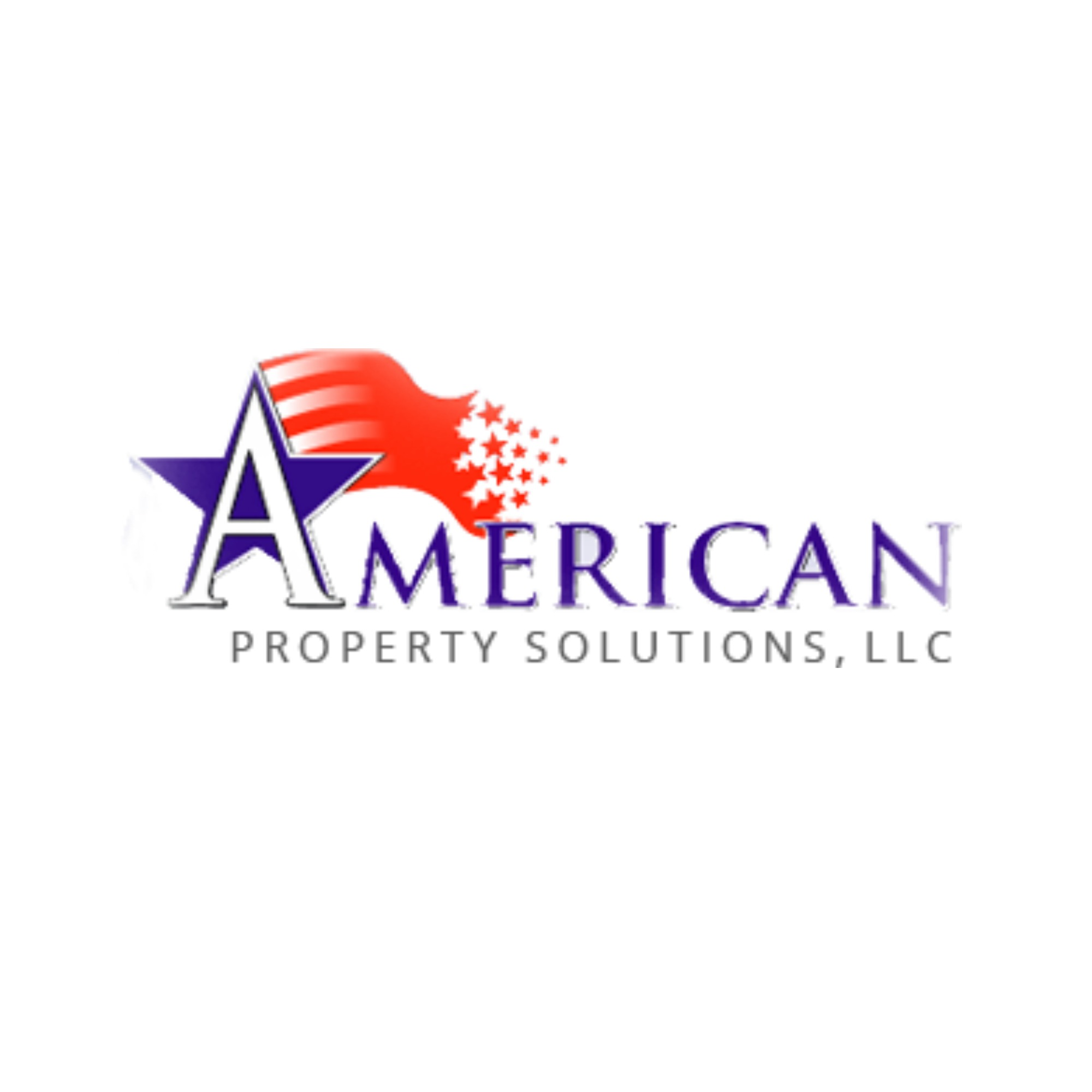 American Property Solutions - Black Owned