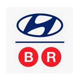Bay Ridge Hyundai - Black Owned