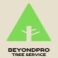 BeyondPro Tree Service - Black Owned