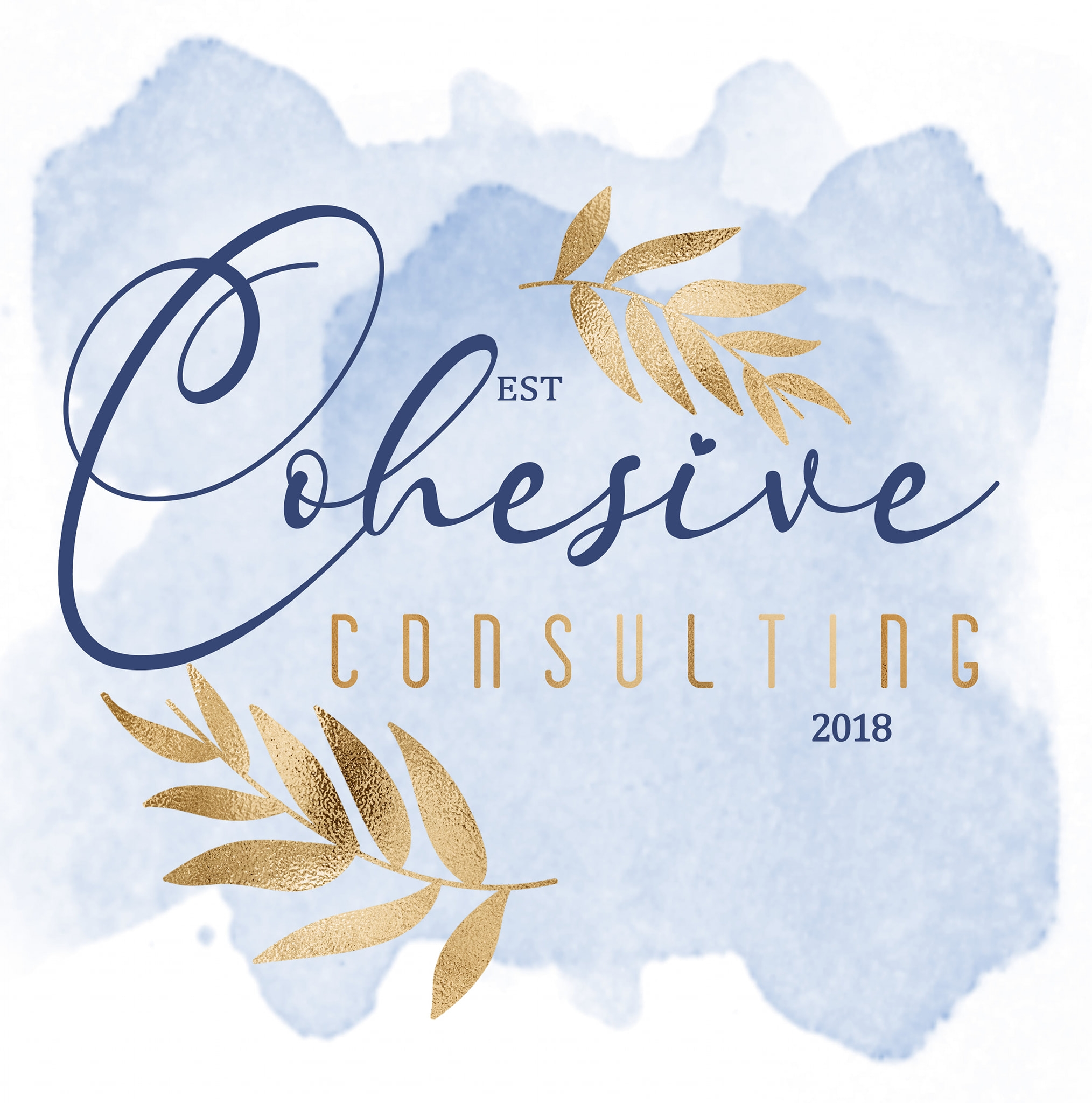 Cohesive Consulting - Black Owned