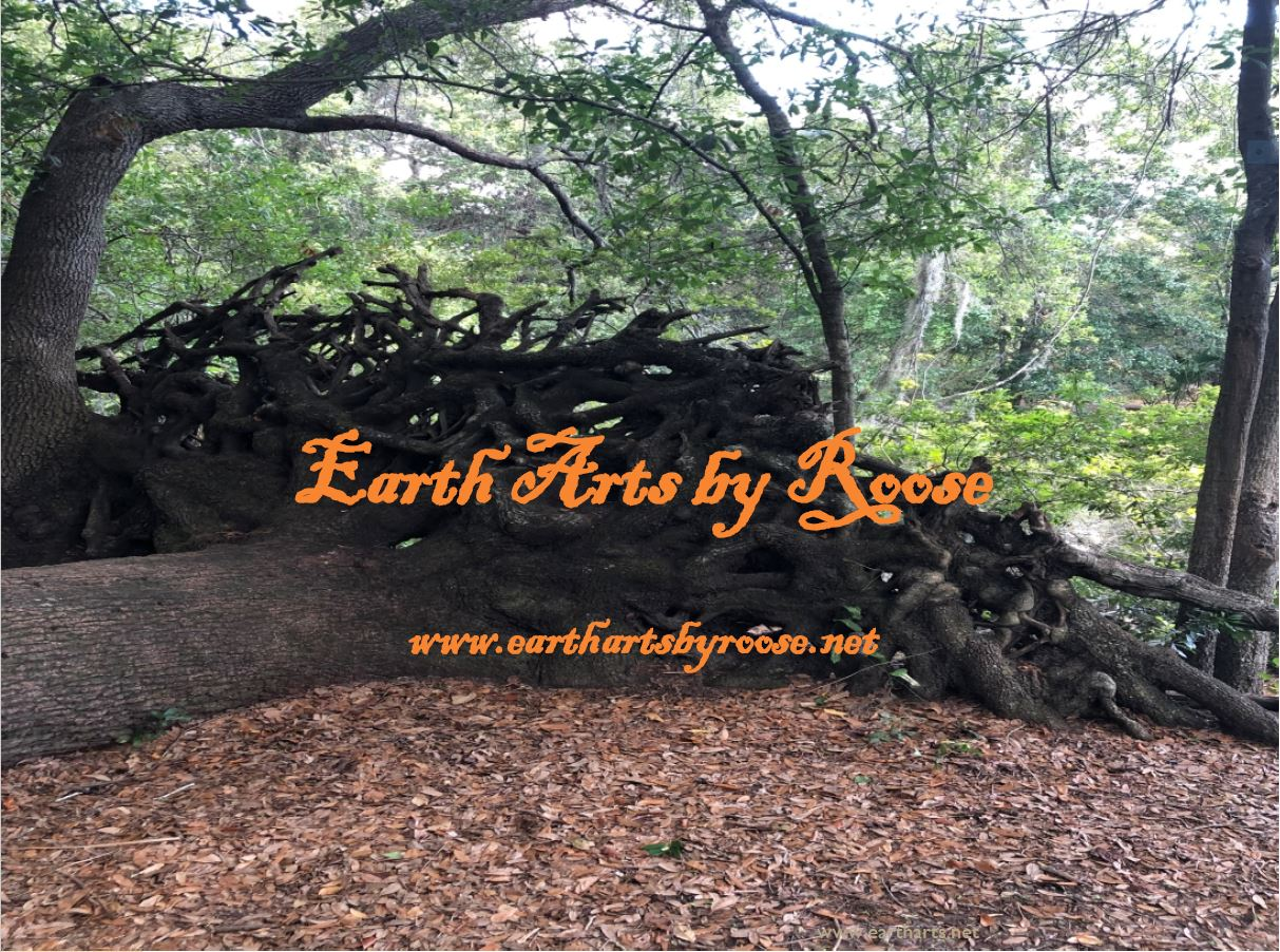 Earth Arts By Roose - Black Owned