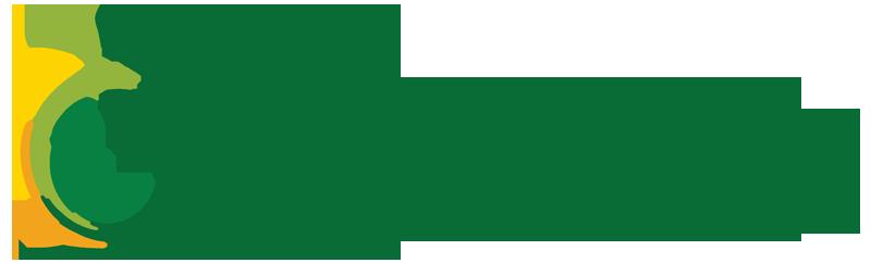 Iya Foods - Black Owned