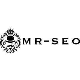 Mr. SEO - Black Owned