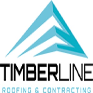 Timberline Roofing & Contracting - Black Owned