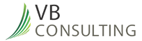 VB Consulting - Black Owned
