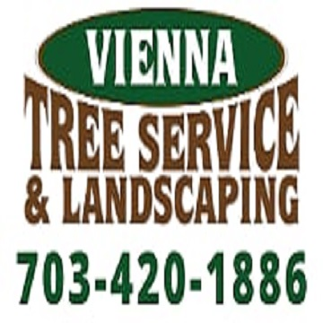 Vienna Tree Service & Landscaping - Black Owned